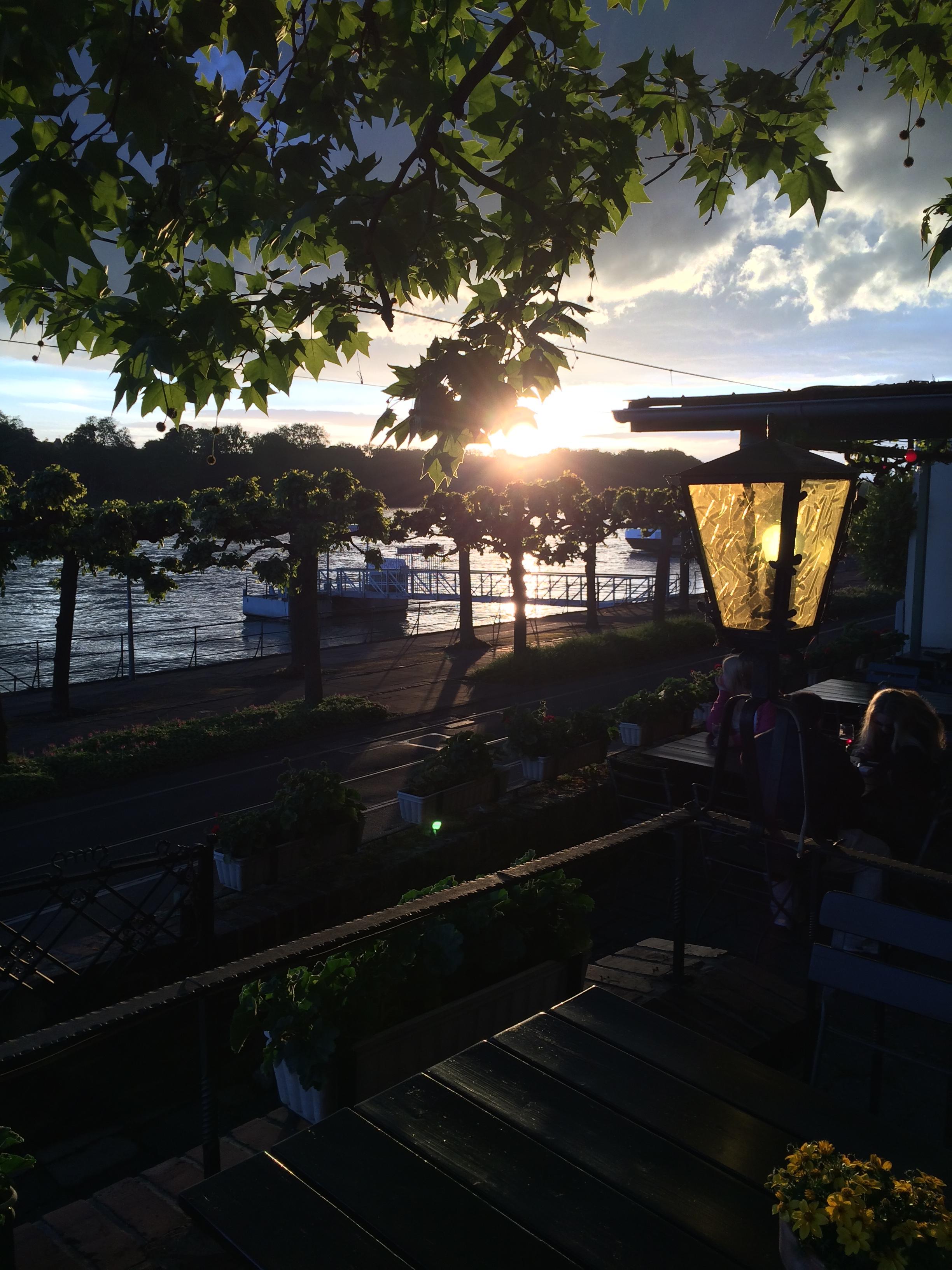 Sonne über den Linden und dem Rhein